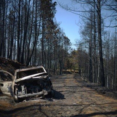 Controlan incendio forestal en Las Vigas, Veracruz
