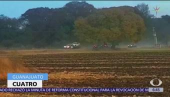 Suman 4 muertos por ataque en Salvatierra, Guanajuato