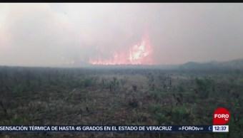 Viento impide sofocar incendio forestal activo en Veracruz
