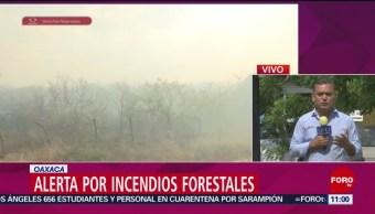 FOTO: Alerta en Oaxaca por incendios forestales, 27 ABRIL 2019