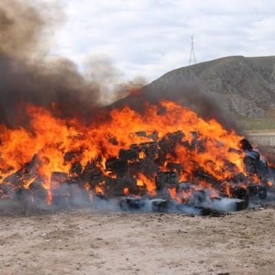 Incineran más de 10 toneladas de marihuana en Torreón, Coahuila