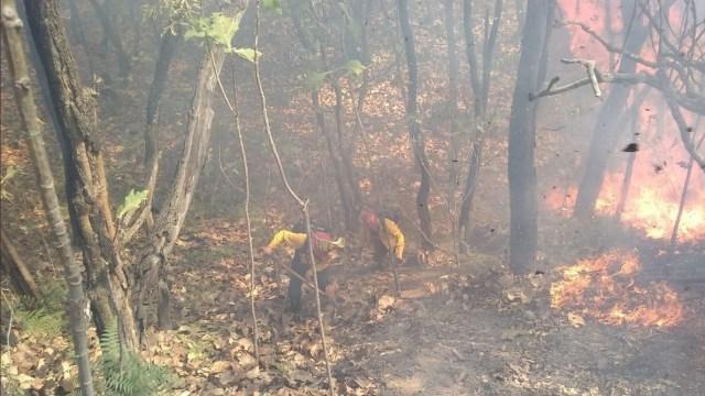 Foto: Incendio en Bosque de la Primavera, 17 de abril. Twitter @CONAFOR