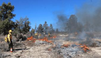 Foto: Incendio forestal en Baja California, abril del 2019, México