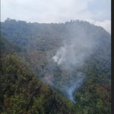 Controlado en 70% incendio forestal en reserva 'El Triunfo' en Chiapas