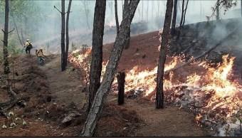 Foto: Incendio forestal en Guerrero, 29 de abril 2019. Twitter @CONAFOR