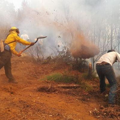 Controlado en 50% incendio forestal en Santa María, Cuernavaca