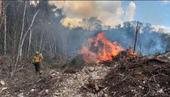 Foto: Combate de incendios forestales, 3 de abril 2019. Twitter @CONAFOR