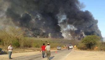 Cinco incendios forestales asedian Tamaulipas