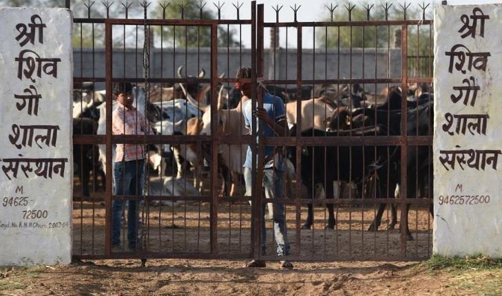 Foto: Un hombre muere y tres resultan lesionados en un linchamiento cuando estaban desollando un buey muerto, reporta la policía india del estado de Jharkhand, abril 13 de 2019 (Foto:trtworld.com)