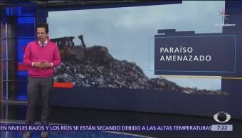 Joya de la Riviera Maya, amenazada por exceso de basura