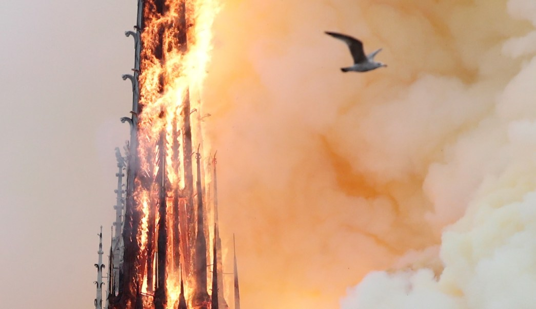 Incendio de Notre Dame: El mundo lamenta la devastadora destrucción de la catedral de París