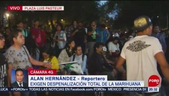 FOTO: Protestan afuera del Senado para despenalizar la marihuana, 24 ABRIL 2019