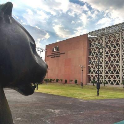 UAM supera a Tec de Monterrey y a UNAM en ranking de impacto social
