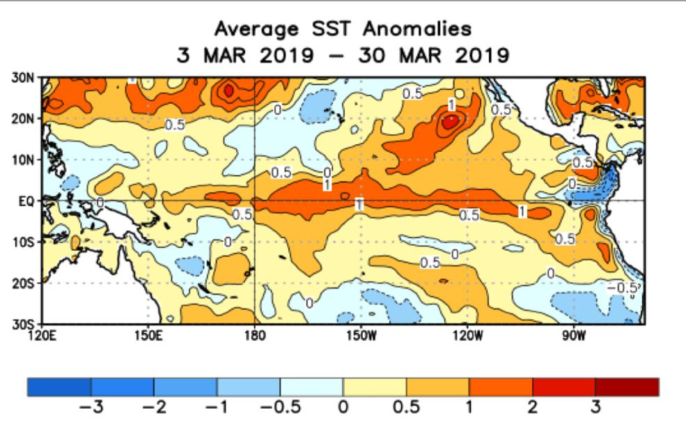 Una imágen térmica dibujada muestra los patrones regulares de la presencia de temeraturas altas de aguas (NASA)