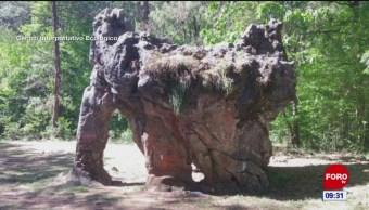 Vandalizan roca milenaria en biósfera 'El Cielo' de Tamaulipas