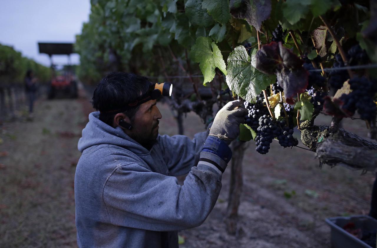 Trabajadores-mexicanos-Programa-Bracero-Jornaleros-Migracion