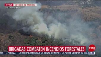 Foto: Brigadas combaten incendios forestales en Valle de Bravo
