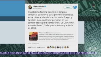 Calderón vs AMLO por reducir presupuesto para prevenir incendios forestales