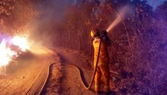 Foto: Incendios afectan zona sur de Jalisco, la alerta atmosférica continúa para 6 municipios, mayo 12 de 2019 (Twitter: @berthareynoso)