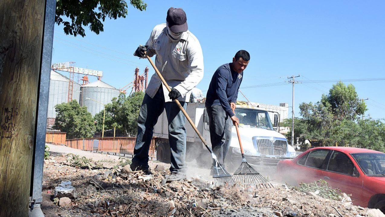 Foto: Trabajadores del Ayuntamiento de Cajeme iniciaron con acciones preventivas para erradicar las plagas de alacranes, 24 mayo 2019