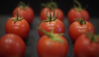 Arancel a tomate mexicano se debe a acusación de antidumping: Seade