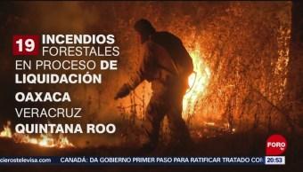Foto: Incendios Forestales México Conafor 27 Mayo 2019