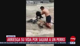 FOTO: Hombre arriesga su vida para salvar a un perro en Pakistán, 26 MAYO 2019