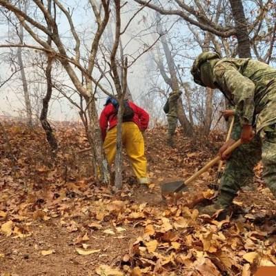 Muere brigadista al caer a barranco durante combate de incendio en Tixtla, Guerrero
