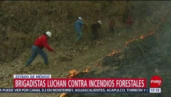 FOTO: Incendio en Valle de Bravo fue provocado, informa el alcalde