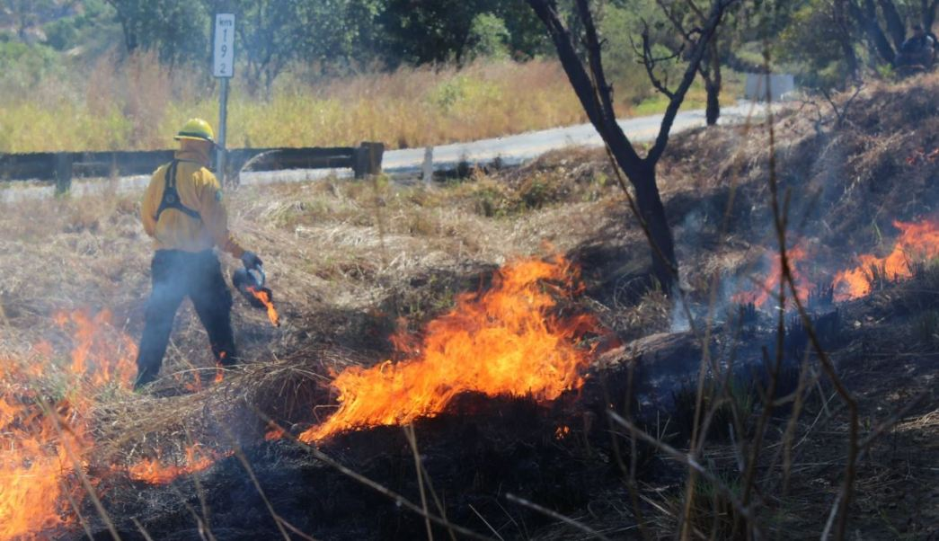 Un combatiente labora para apagar los incendios forestales, 11 mayo 2019