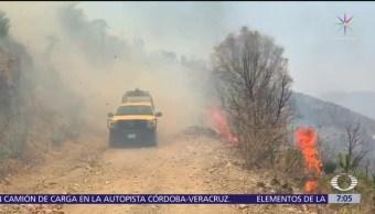 Incendios forestales se extienden en gran parte de México