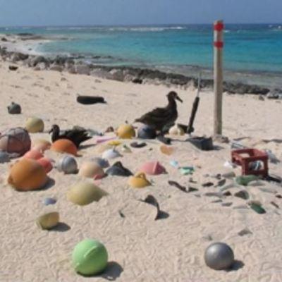 Las islas Cocos acumulan 414 millones de residuos de plástico en costas