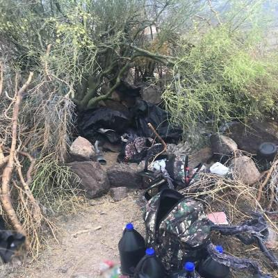 Aseguran narcocampamento en Sonora; hay 14 detenidos