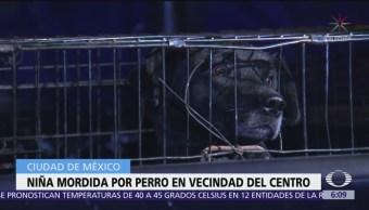Perro muerde a niña en vecindad del Centro Histórico, CDMX