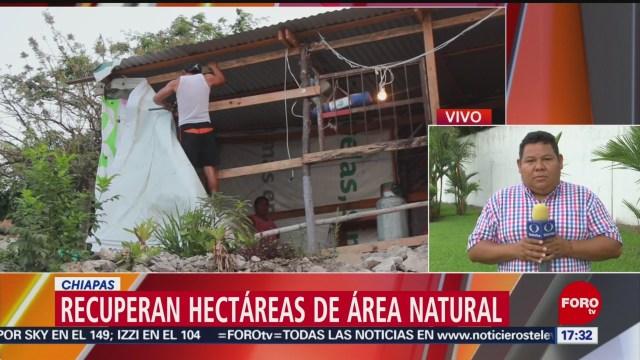 Foto: Policía recupera áreas naturales en Chiapas