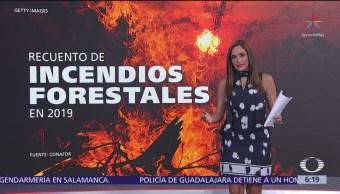 Recuento de incendios forestales en 2019