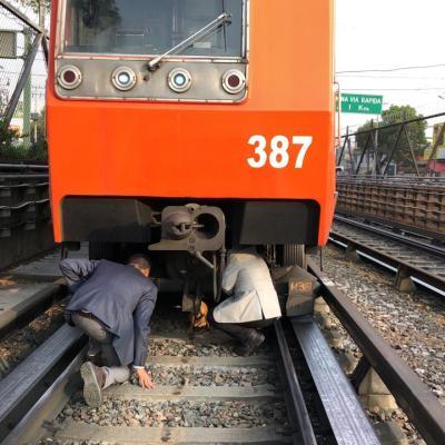 Rescatan a perro debajo de convoy en Metro Constitución de la CDMX