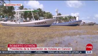 Foto: Usan barcos camaroneros contra el sargazo en Quintana Roo