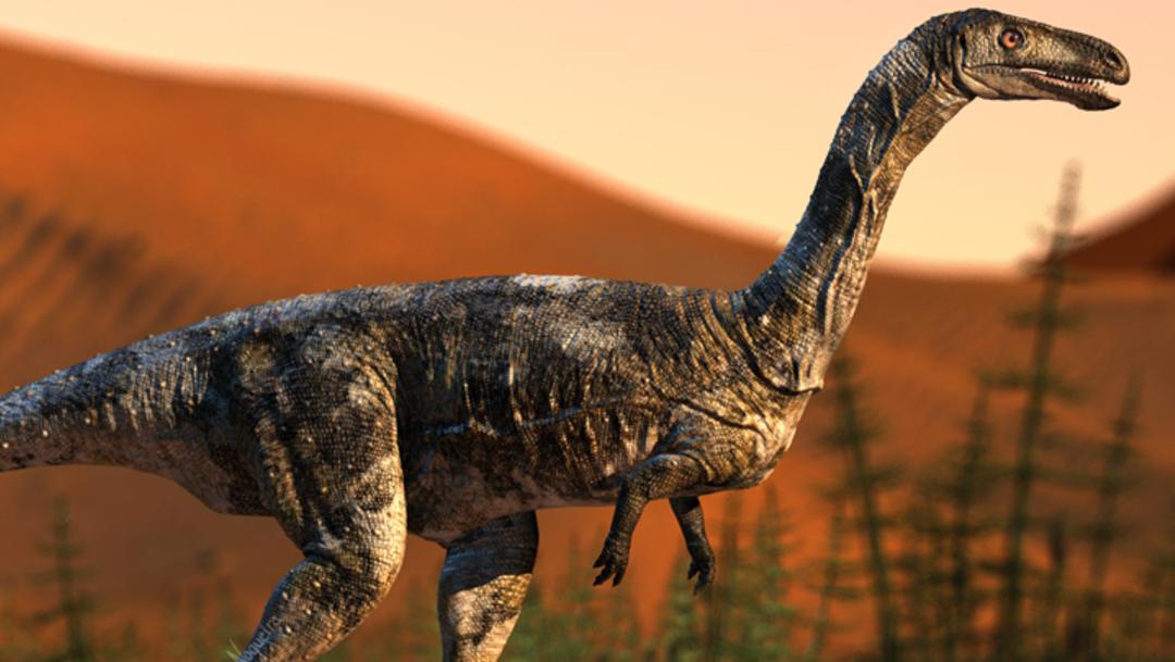 foto Descubren nueva especie de dinosaurio carnívoro 27 junio 2019