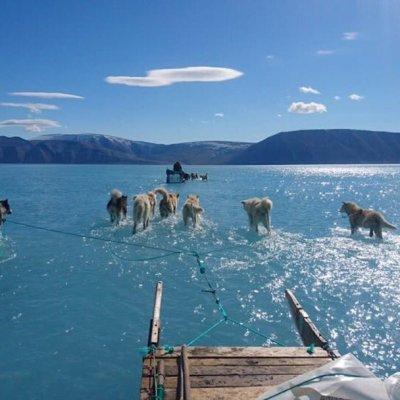 Foto revela alarmante deshielo de glaciares en Groenlandia