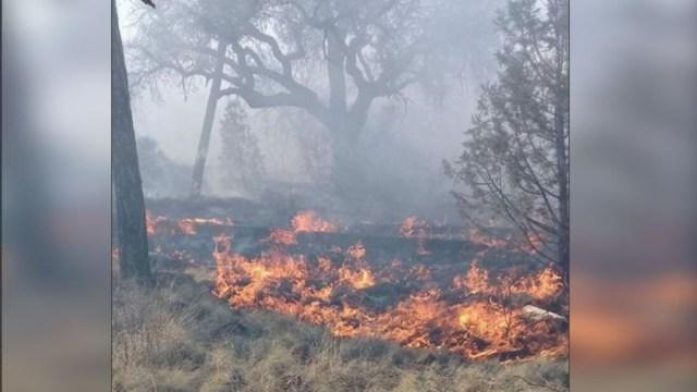 Foto:Se mantienen activos 14 incendios forestales en Chihuahua., 26 junio 2019