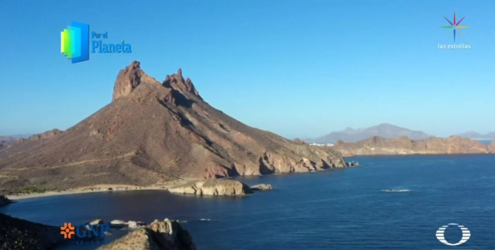 Foto: Isla de San Pedro Nolasco, el acuario del mundo en Sonora 28 junio 2019