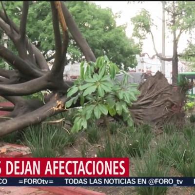 Lluvias dejan afectaciones en Jalisco