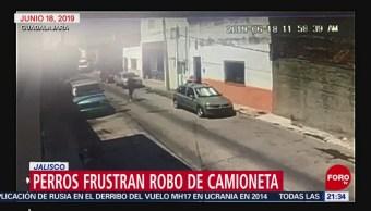 Foto: Perros Frustran Robo Camioneta Jalisco Guadalajara 20 Junio 2019