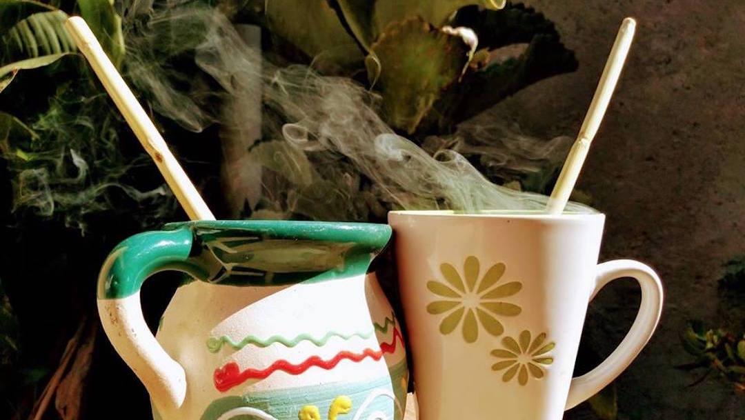 carrizo-popotes-biodegradables-jovenes-Puebla-plastico