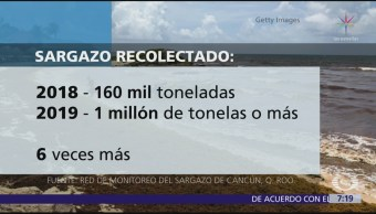 Pronostican llegada de un millón de toneladas de sargazo en Cancún
