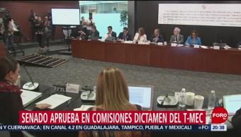 Foto: Senado Aprueba Comisiones Dictamen T-Mec 14 Junio 2019