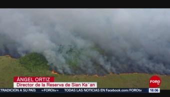 FOTO: 3 incendios acaban con miles de hectáreas en Quintana Roo, 20 Julio 2019