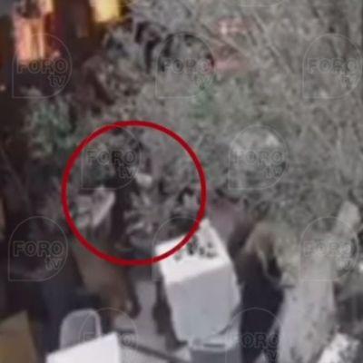 VIDEO: Así fue el homicidio de dos israelíes en Artz Pedregal