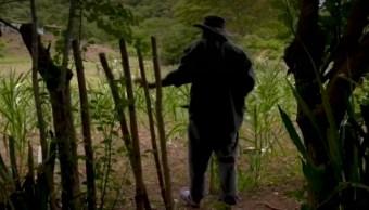 Sequía por cambio climático en Honduras obliga a campesinos a migrar a EEUU